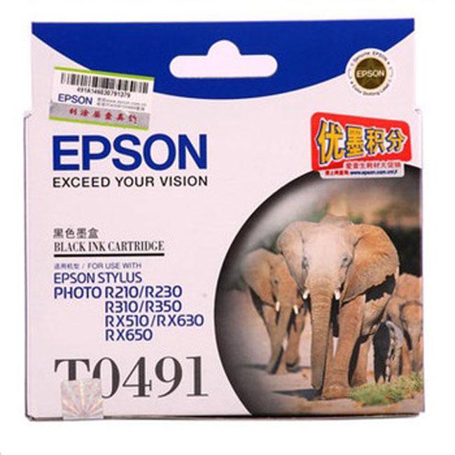 爱普生T0491黑色墨盒(适用PhotoR210/230/310)